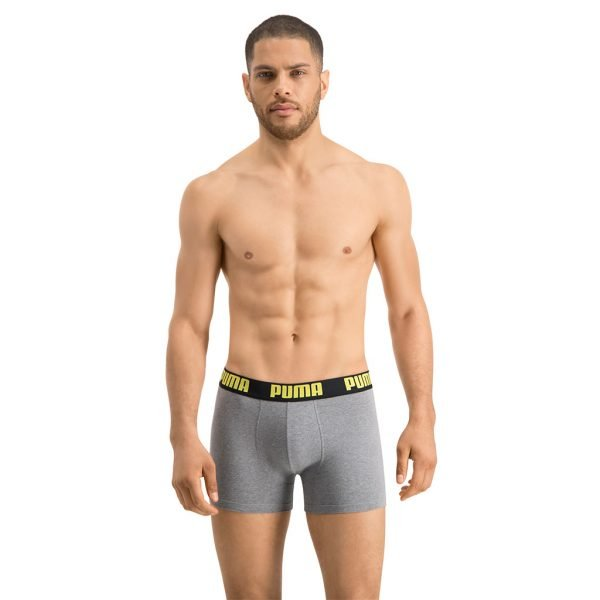 Puma-boxer-Grey-front-view