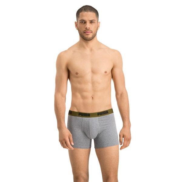 Puma-boxer-grey-front-view-model